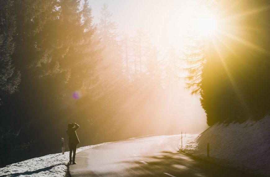 7 Tips Memotret di Bawah Sinar Matahari Langsung ?